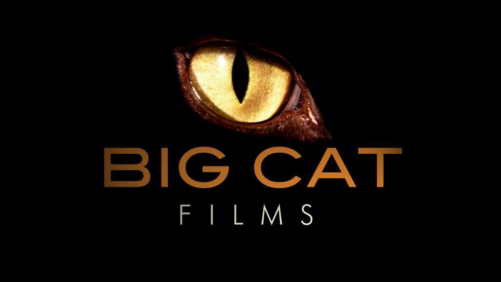 Big Cat Films logo
